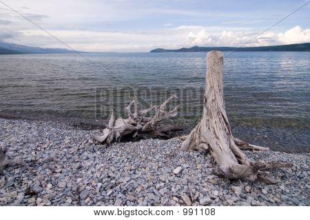 White Lake
