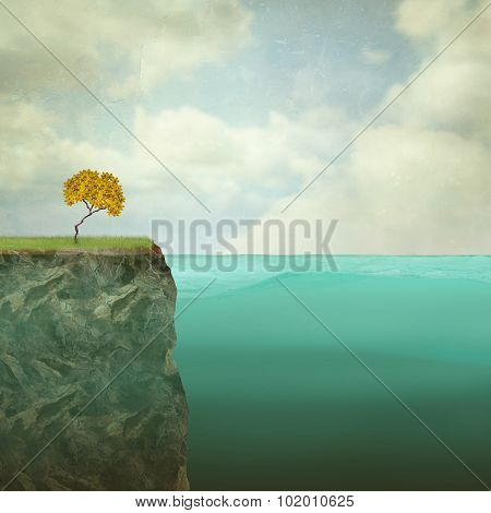Small Tree Perched