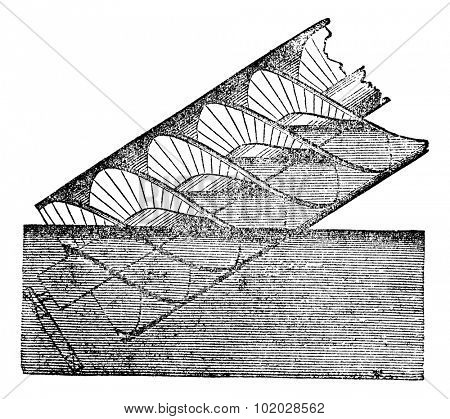 Archimedes screw or Archimedean screw or screwpump, vintage engraved illustration. Magasin Pittoresque 1875.