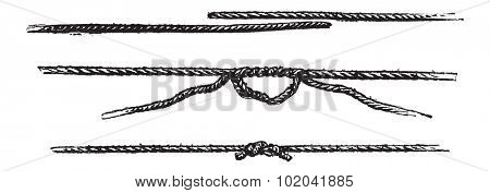 Fisherman's Knot, vintage engraved illustration. Le Magasin Pittoresque - 1874