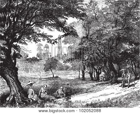 View of Phoenix Park, vintage engraved illustration. Journal des Voyages, Travel Journal, (1879-80).