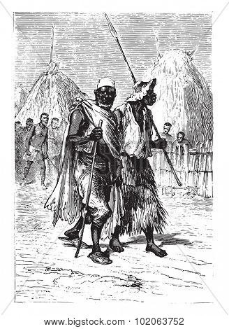 Together Alves, appeared his friend Coimbra, vintage engraved illustration. From 15 year's old captain book from Jules Verne - 1880
