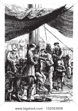 The most anxious care was provided to the shipwrecked, vintage engraved illustration.  Jules Verne, a 15 year old captain.