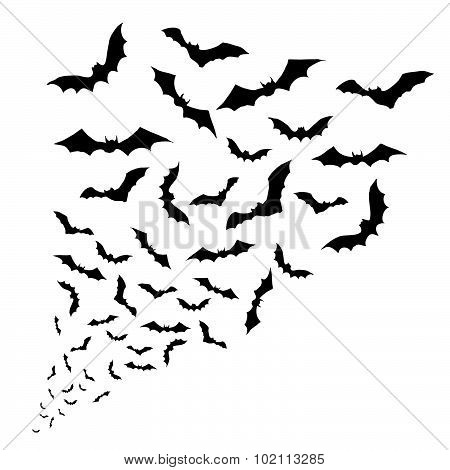 Swarm of bats on the white background