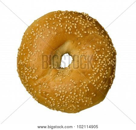Sesame Seed Bagel Against White
