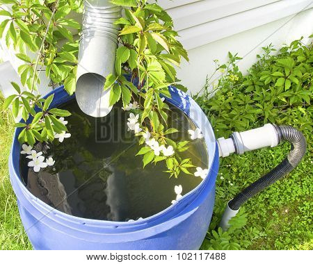 Drain For Rainwater