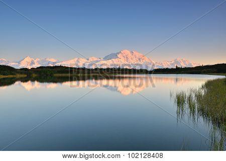 Denali Mountain And Reflection Pond