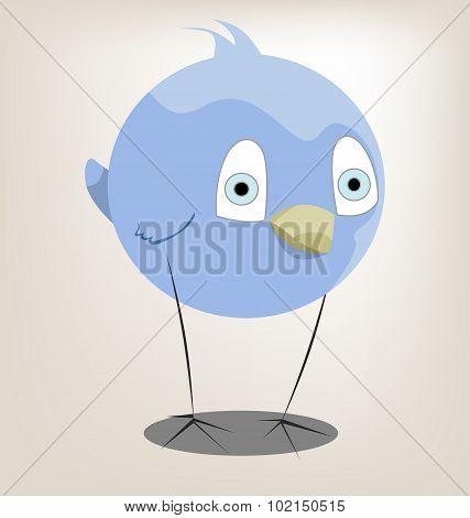 Funny Character Bird