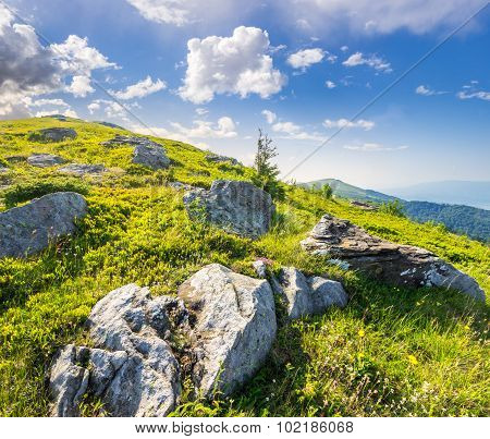 Boulders On The Hillside In High Mountains At Sunrise