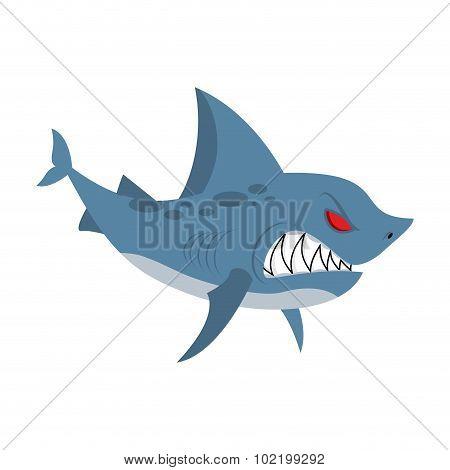 Angry shark. Marine predator with large teeth. Deep-water denizen. Vector illustration shark on white background poster