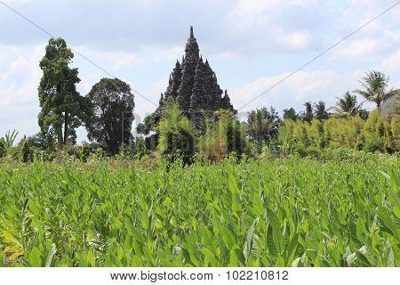 Sojiwan temple