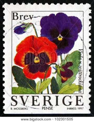 Postage Stamp Sweden 1997 Garden Pansy, Flowering Plant