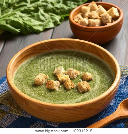Cream of Chard Soup