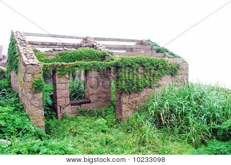 Stone house with plants