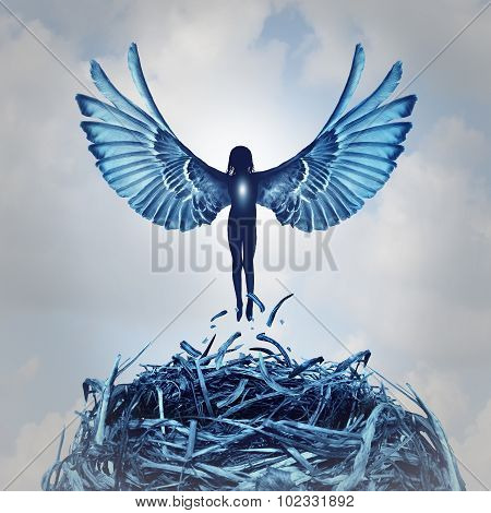 Angel Concept