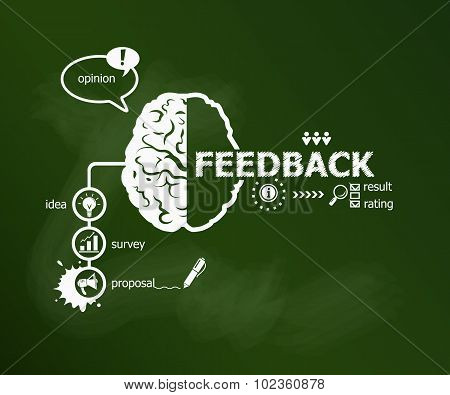 Feedback Concept And Brain.