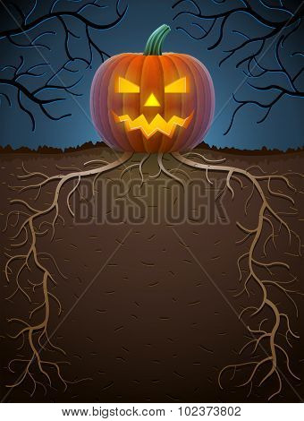 Jack-o-lantern With Roots In Night Lighting