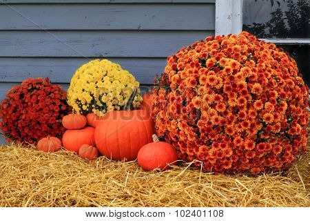 Harvest And Thanksgiving