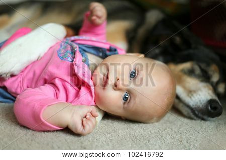 Baby Girl Snuggling With Pet German Shepherd Dog