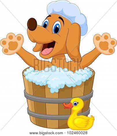 Cartoon Dog bathing in the Dog bathing