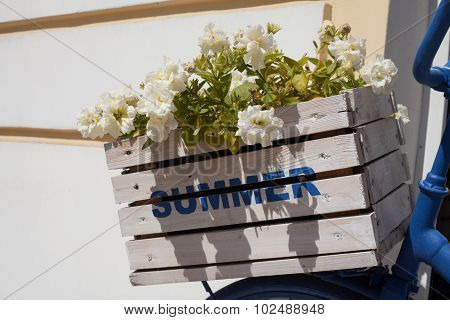 Summer Flower Box And Bicycle