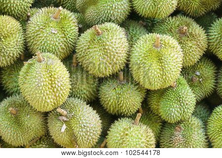 Durians king of fruits
