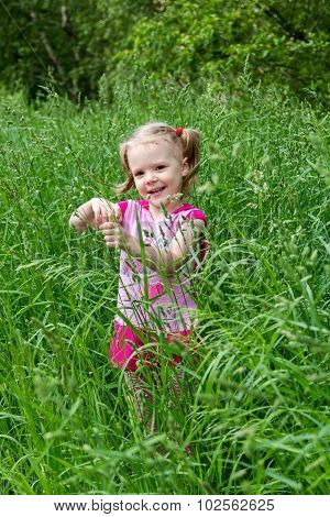 Little Girl With Pigtails In Tall Grass