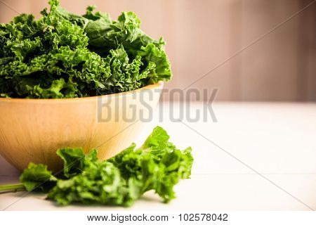 Cropped image of fresh kale in a bowl on the table
