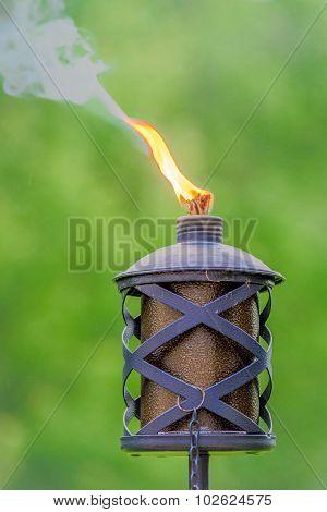 Torch Light
