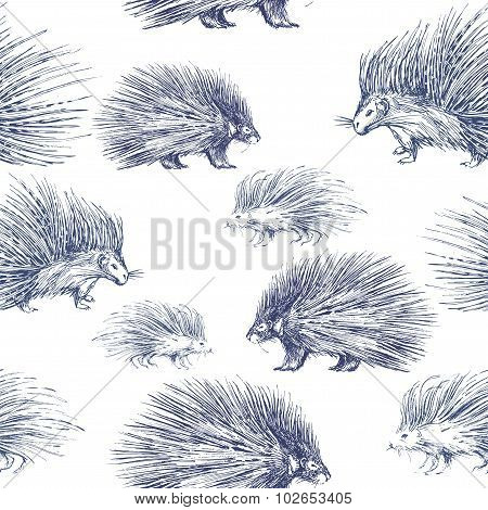 Seamless pattern with porcupines. Prickly and wild animal. Black and white illustration. poster