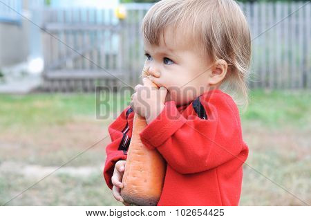 Child Scrunching Carrot Outdoor
