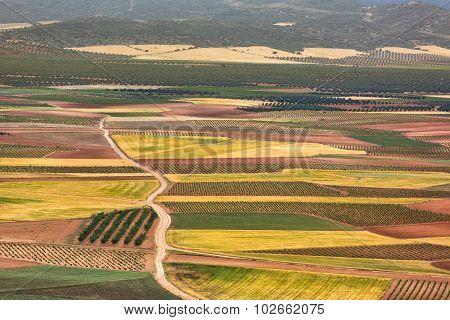 Color fields in Castile-La Mancha, Spain