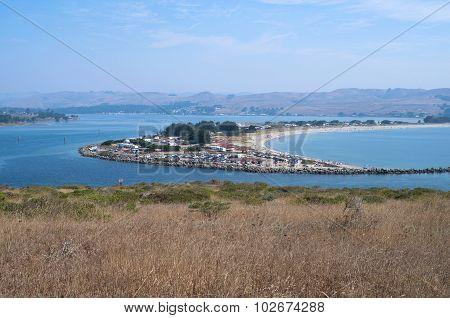 Bodega Bay Harbor And Doran Park