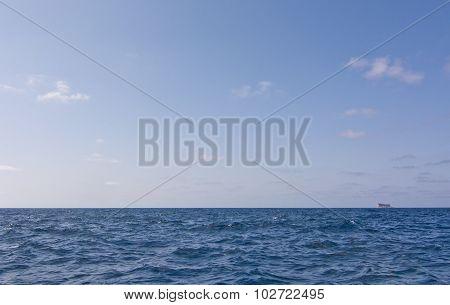 Bird Island Filfla