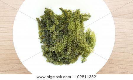 Sea Grape Seaweed, Uni Budou. Japanese Seaweed