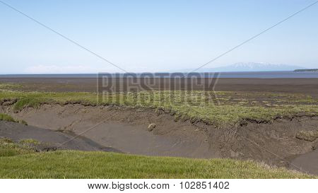 Mudflats and Mount Susitna