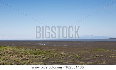 Mount Susitna Landscape