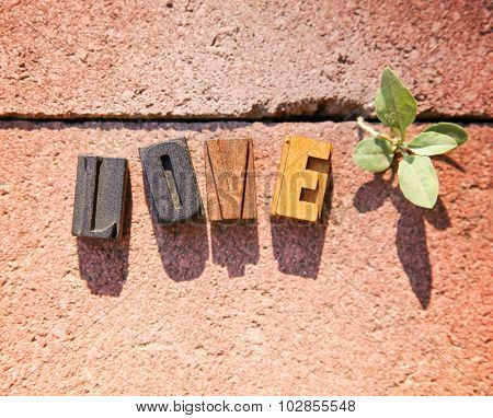 wooden block letters spelling out the word love on a red brick paver with a tiny plant growing through the crack next to it