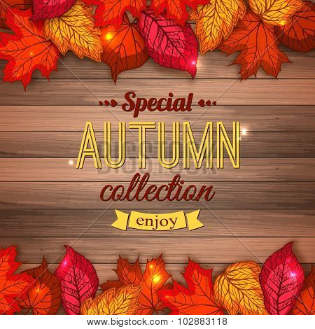 Special autumn collection typographical background with shining foliage. Autumn sale, autumn leaves,
