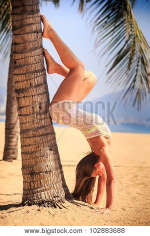 Blonde Girl In Lace Closeup Stands Head Over Heels At Palm