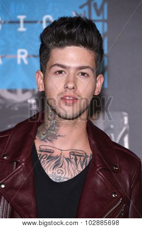 LOS ANGELES - AUG 30:  Travis Mills 2015 MTV Video Music Awards - Arrivals  on August 30, 2015 in Hollywood, CA