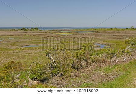 Wetlands on the Pea Island Wildlife Refuge on the Barrier Islands of Cape Hatteras in North Carolina poster