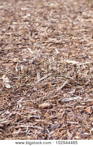 Natural Pine Tree Bark Used As A Soil Covering For Mulch