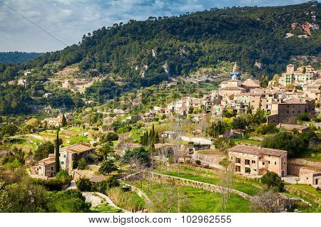 Valldemossa In Spring