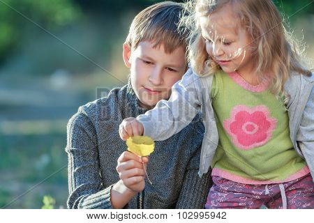 Fall forest outdoors portrait of sibling children examining light yellow armful of leaves
