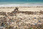 Trash on beach. Waste on the sands causes environmental pollution poster