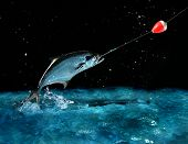 catching a big fish with a fishing pole at night poster
