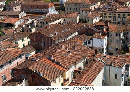 Aerial view of the small medieval town of Lucca, Toscana (Tuscany), Italy, Europe. View from the Guinigi tower poster