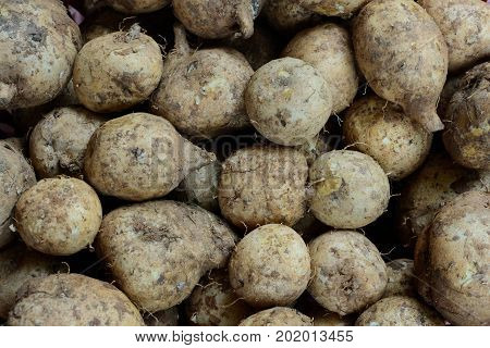 Stack Of Wild Yams  In Basket At The Market