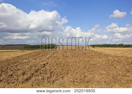 newly plowed soil with woodland and a small village under a blue summer cloudy sky in the yorkshire wolds